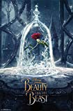 """Amazon Price History for:Trends International RP15089 Beauty and The Beast Teaser Wall Poster, 22.375"""" x 34"""""""