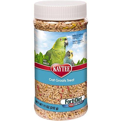 Kaytee Forti-Diet Pro Health Oat Groats Treat for All Pet Birds, 11-oz jar