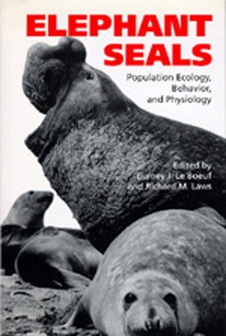 elephant seals - 4