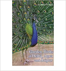 Garden Birds Of Delhi Agra And Jaipur Paperback Common Amazon