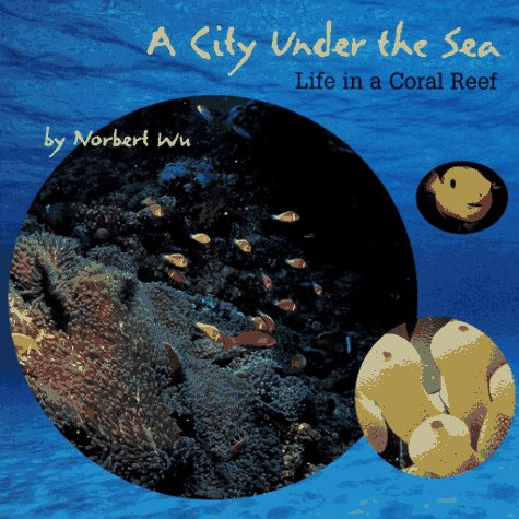 A City Under the Sea: Life in a Coral Reef