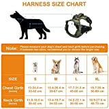 No Pull Harness for Large Dogs Medium Dogs