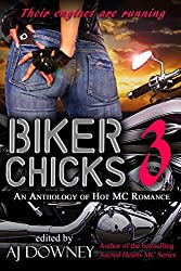 Biker Chicks: Volume 3