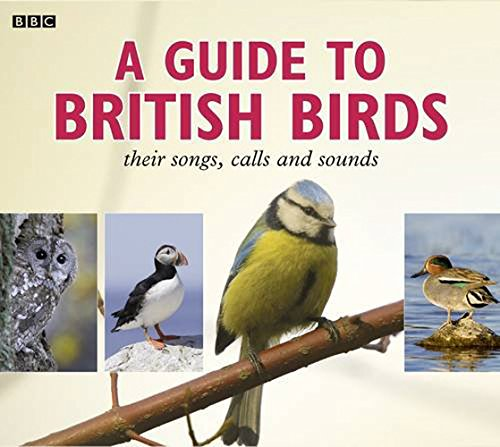 A Guide To British Birds: Their Songs, Calls And Sounds by BBC Books