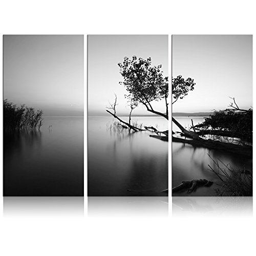 Black White Landscape Photographs - Visual Art Decor Fancy Tree in Lake Modern Canvas Prints Quiet Scenery Modern Photograph Picture Prints Home Decor Artwork (Black and White Tree Large)