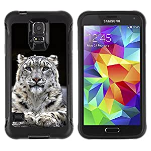 ZeTech Rugged Armor Protection Case Cover - Majestic Mountain Lion Blue Eyes - Samsung Galaxy S5
