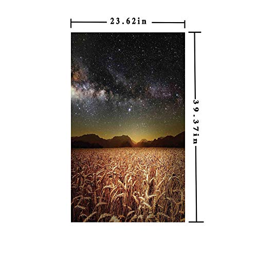 (No Glue Static Cling Window Film Decorate by Wheat Field Meadow Under Stars Clusters Twilight Harvesting Rural Art Print,W15.7xL63in,for Home Office with Tan Grey)