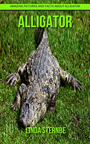 Alligator: Amazing Pictures and Facts About Alligator