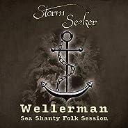 Wellerman (Sea Shanty Folk Session)