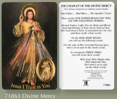 Rosarybeads4u Prayer Verse Card Laminated Divine Mercy