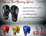 Outslayer Muay Thai Boxing Sparring Gloves
