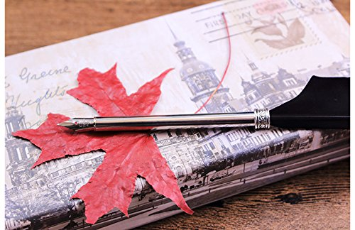 Quill Pen,Luxury Quill Pen and Ink Set (Silver) by UE Fashion (Image #6)