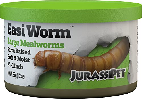 Best canned mealworms list