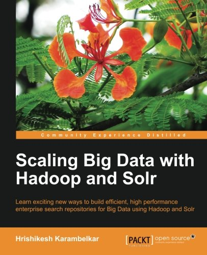 Scaling Big Data with Hadoop and Solr