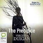 The Precipice | Virginia Duigan