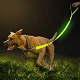 Namsan LED Dog Leash- Outdoor Safety Dog Leash Reflective Nylon Adjustable Pet Dog Leash with Extra Foam Handle for Small Medium Large Dogs,Green