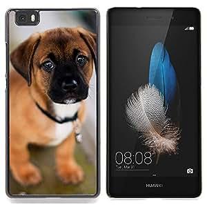 Ihec Tech Cachorro de perro mastín Bull lindo del animal doméstico / Funda Case back Cover guard / for Huawei Ascend P8 Lite (Not for Normal P8)