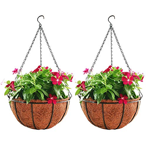 Baskets Flower Outdoor (Hanging Planter Hanging Flower Basket 2Pack with Coco Coir Liner Metal Chain 12inch Round Wire Plant Growers Holder Flower Pots Hanger for Indoor Outdoor Garden Porch Decoration)