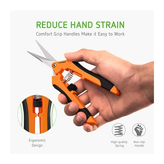 VIVOSUN Gardening Hand Pruner Pruning Shear 4 REDUCE HAND STRAIN: These micro tip snips are built spring-loaded so that they automatically push themselves open without you having to do the work which greatly reduces hand fatigue making these snips great for those with arthritis, carpal tunnel, hand or wrist issues. Comfort Grip handles will make it easy to work for long periods of time without discomfort ULTRA SHARP BLADES: These quality snips come with stainless steel precision-sharpened blades and are ready to tackle all of your deadheading, trimming, and shaping needs for your roses, annuals, vegetable and small flower gardens SECURE, EASY TO OPERATE LOCK: These micro tip snips feature a safe and secure sideways locking mechanism that keeps your blades protected and closed when not in use. The design of these pruning snips are perfect to use whether you are right or left handed with ease