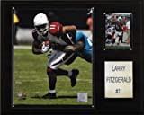 NFL Larry Fitzgerald Arizona Cardinals Player Plaque
