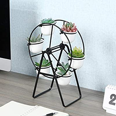 Superbpag Ferris Wheel Stand with 6 Succulent Plant Pots, Black: Garden & Outdoor