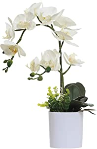 Omygarden White Orchid Artificial Flowers in Pot, Fake Plastic Orchid Flowers, Decoration for Home Office Wedding(White 2 Bouquets)