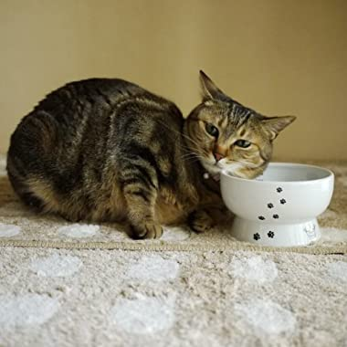 Raised Water Bowl for Cat(Cat)water#stand#ceramic