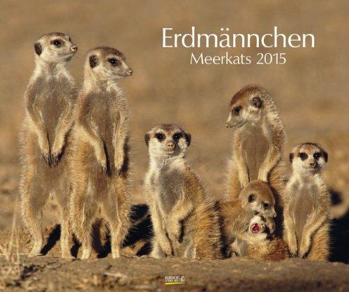 Erdmännchen 2015: PhotoArt Kalender