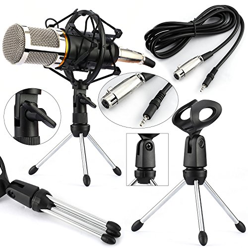 ndenser Microphone with Stand & Shock Mount Holder Professional ()