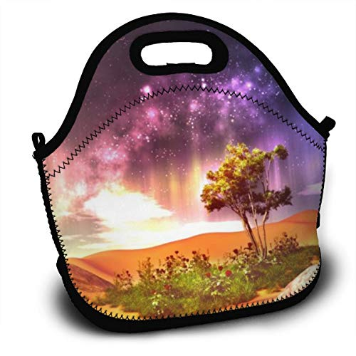 Dejup Lunch Bag Beautiful Aurora Tote Reusable Insulated Lunchbox, Shoulder Strap with Zipper for Kids, Boys, Girls, Women and Men -