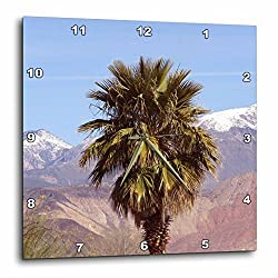 3dRose Jos Fauxtographee- Palm Tree with Snow in back - A palm tree on green springs drive in Washington Utah with snow - 10x10 Wall Clock (dpp_263404_1)