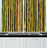 Images of Kitchen Window Curtains Ambesonne Kitchen Decor Collection, Bamboo Background Nature Zen Image Home Interior Design Cafe Asian Style Art Greenery, Window Treatments for Kitchen Curtains 2 Panels, 55X39 Inches, Green Yellow