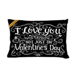 Artsbaba Pillowcases I Love You Everyday Not Just On Valentine's Day Zipped Pillowcase Decorative Throw Pillow Cover 20''x30''