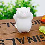 Autumn Water 1pcs Finger Toys Squishy Mini Kawaii Squeeze Stretchy Animal Healing Stress White Gray Cat Animals Anti-Stress Hand Toys