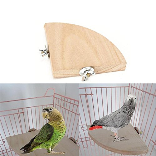 Fan Shape Wooden Parrot Bird Cage Perches Stand Platform Pet Parakeet Budgie Toys Hanging Resk Toy Gift Supplies - Fan Pointer Club