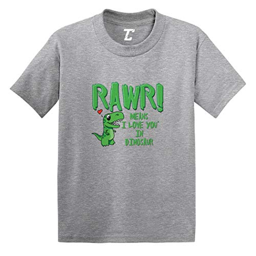 Rawr! Means I Love You in Dinosaur Infant/Toddler Cotton Jersey T-Shirt (Light Gray, 24 Months)