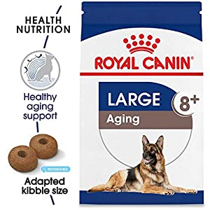 Royal Canin Size Health Nutrition Large Aging Dry Dog Food 36
