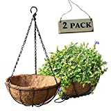 Wire Hanging Basket Metal Planter With Coconut Husk Liner 8inch,Plant Hangers with Coco Planters Liners,Orchid Pots Decorations for Home Garden Yard Porch Indoor Outdoor 2PCS