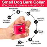 Small Dog Bark Collar Rechargeable For Tiny To Medium Dogs (5+lbs) - Vibration No Shock Collar - Humane Anti Bark Training Device - Best No Bark Control Collar - Stop Barking Collar For Mini Dog Puppy