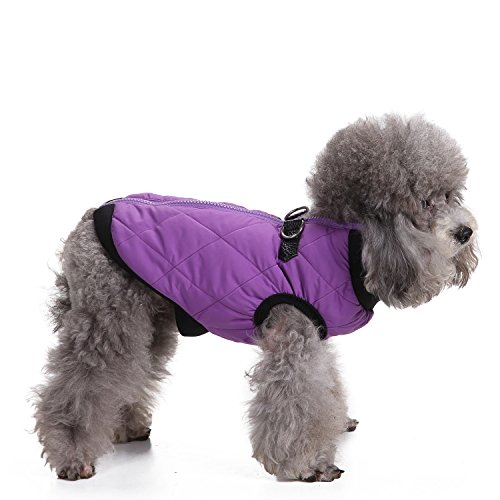 Stretchable Puppy Dog Leash Harness (Orange) - 4