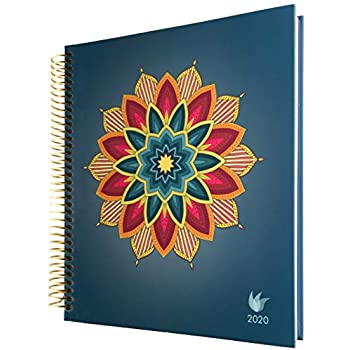 Amazon.com : 2019-2020 Deluxe Law of Attraction Life Planner ...