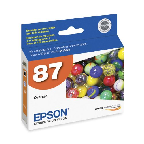 Epson UltraChrome Original Ink Cartridge Model T087920