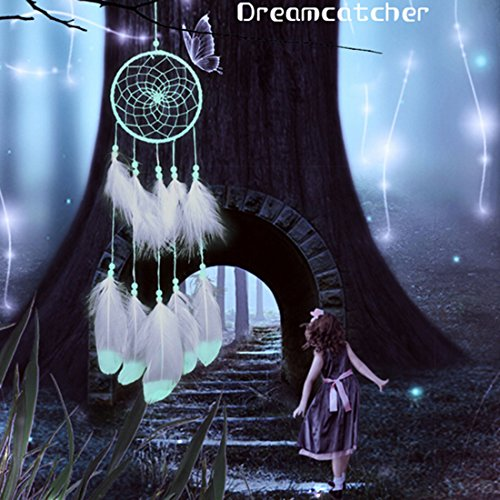 Little Chair Glow In The Dark Handmade Feather Beads Dream Catcher Circular Net Home Room Wall Hanging Decor Party Wedding Ornament (Feather+Beads)