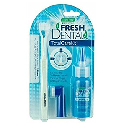 Naturel Promise Fresh Dental Total Care Kit with Toot Brush Finger Brush and Brishing Gel by Dental Fresh
