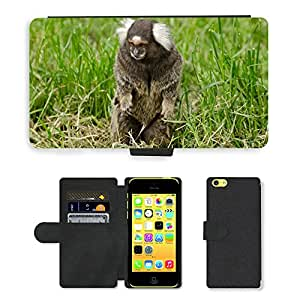 GoGoMobile PU LEATHER case coque housse smartphone Flip bag Cover protection // M00123375 Naturaleza Fluffy zoo Piel Ape // Apple iPhone 5C