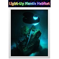 Insectsales.com Light-Up Praying Mantis Clear Plastic Ventilated Habitat - Convenient Handle
