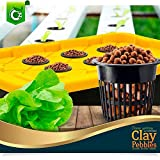 Organic Expanded Clay Pebbles Grow Media for