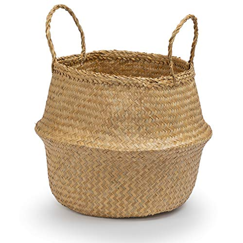 - Seagrass Round Basket with Handles, Decorative Woven Basket, Plant Holder, Picnic Basket or Indoor Storage for Blankets, Toys or Laundry, by Toma Design (Natural, Medium)