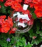 4 Boules d'irrigation, d'arrosage rempli par silicone 8 cm pour soin des plantes DKMS