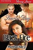 Black Fire [Panther Key 2] (Siren Publishing Menage Amour)